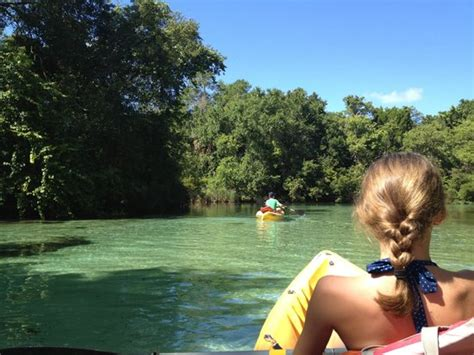 Gardens Detox Hill Fl 34606 by Paddling Adventures Hill Fl Top Tips Before You