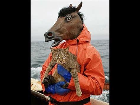 Sho Kuda Untuk Manusia heboh manusia berkepala kuda beneran nyata