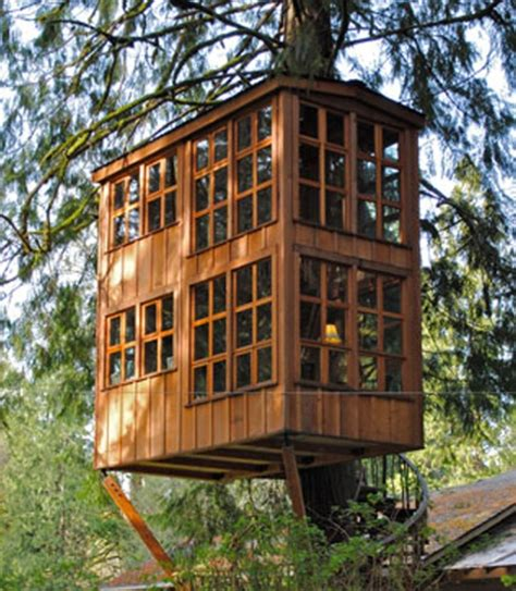 Two Story Craftsman animal planet to premiere treehouse masters 5 31