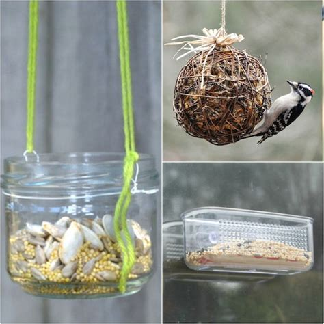 make bird food