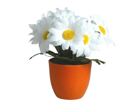 Flower Pot Cool Flower Pot Ideas Car Interior Design