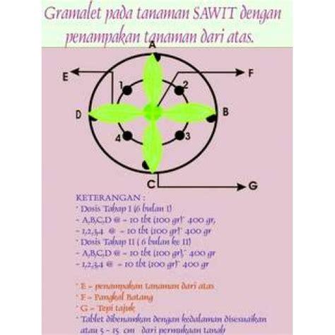 Pupuk Majemuk Kelapa Sawit pupuk tablet gramalet 174 kelapa sawit
