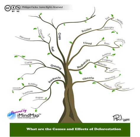 tree mapping software free mind map software s can cope with wo man s creativity