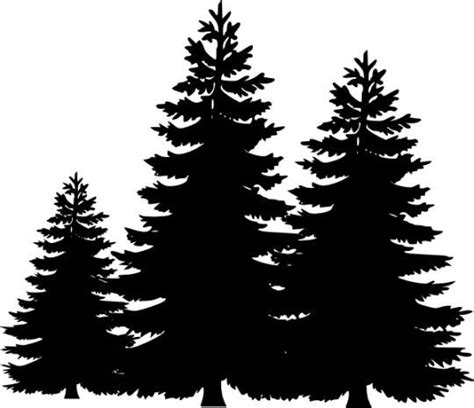 Pine Tree Outline by Best 25 Pine Tree Silhouette Ideas On Tree Silhouette Tree Silhouette And