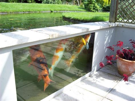 backyard window water garden and koi pond designs for the backyard and patio