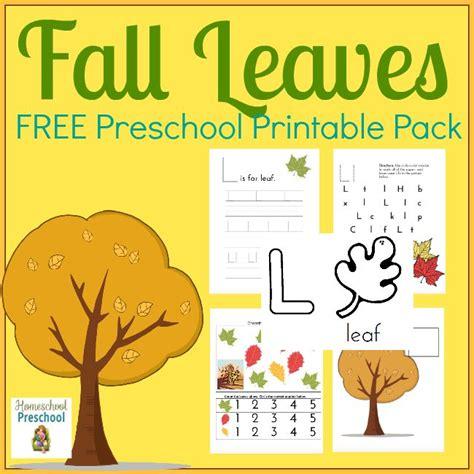printable fall leaves for preschoolers free fall leaves preschool printables free homeschool