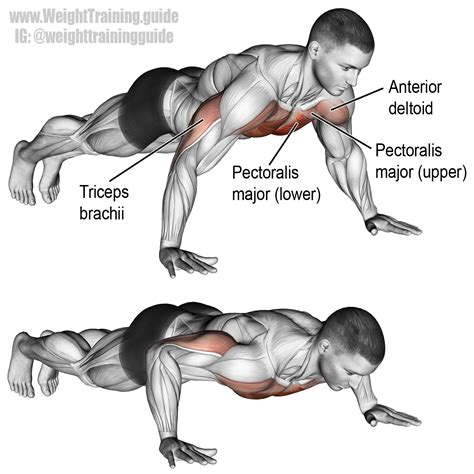 bench press push up the push up is an extremely versatile bodyweight exercise