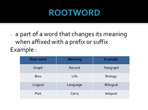 biography root word meaning english