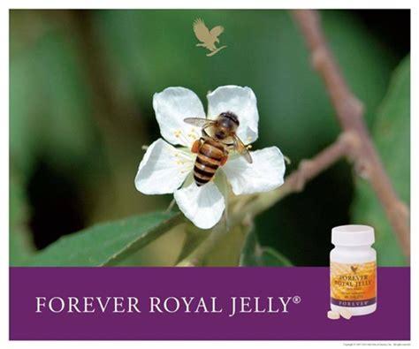 Madu Royal Jelly Asli khasiat royal jelly forever royal jelly jeli raja asli