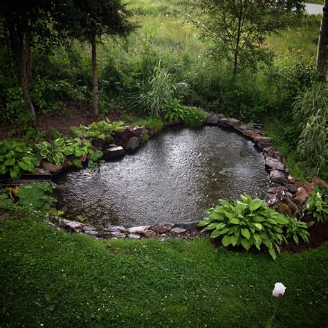 via s media cache ak0 pinimg com gardenpond waterfeatures heart shaped garden pond with
