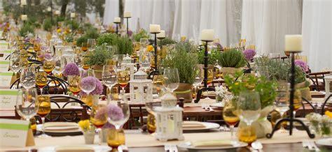 affitto sedie matrimonio preludio noleggio noleggio attrezzature per catering