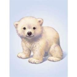 polar bear cub foil engraved prints