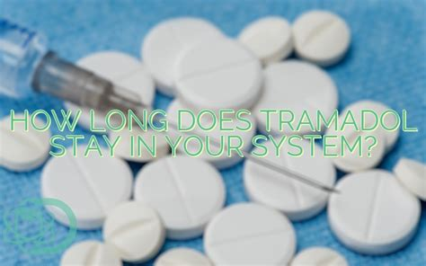 how does gabapentin stay in a s system how does tramadol stay in your system education