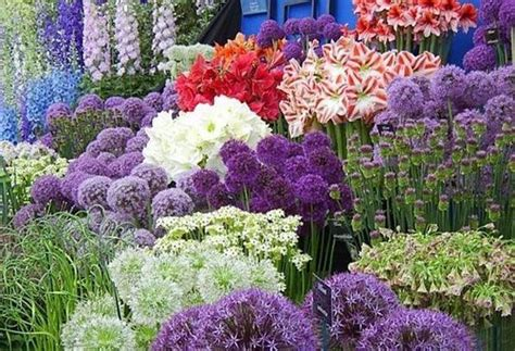 10 eye catching flower beds to tantalize page 2 of 4