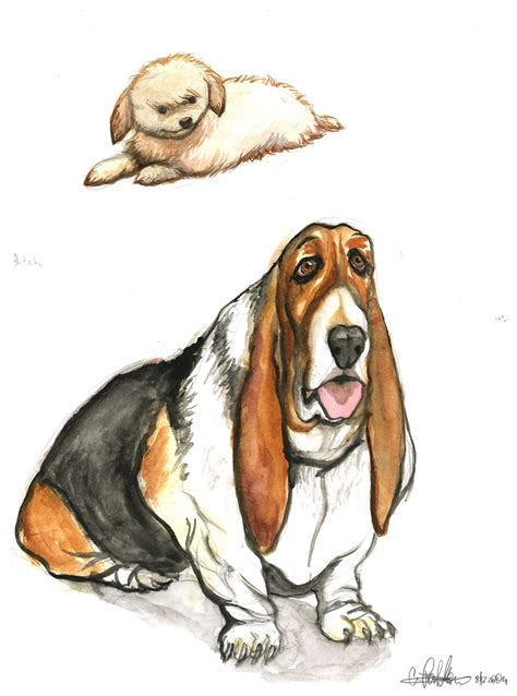 puppy illustration illustrations by christopher partellow at coroflot