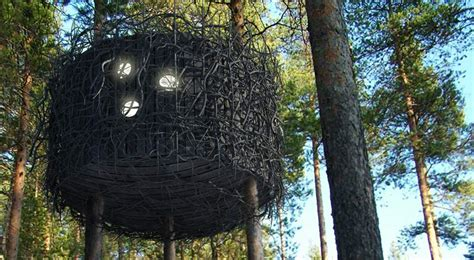 tree hotel sweden if it s hip it s here archives the treehotel in