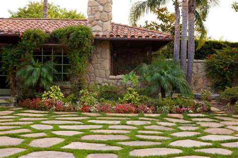 trees for front yard landscaping bloombety tree landscaping ideas with wall tree
