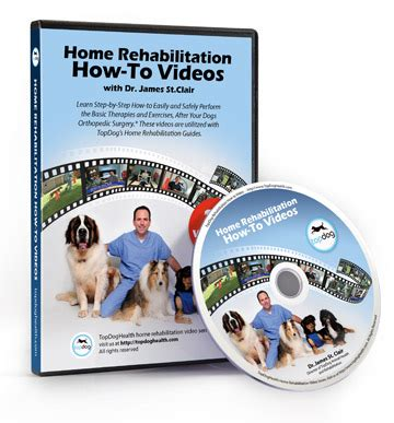 Detox Recovery Powder Dr Jeff Vet Recommended For Liver by Home Rehab Topdoghealth