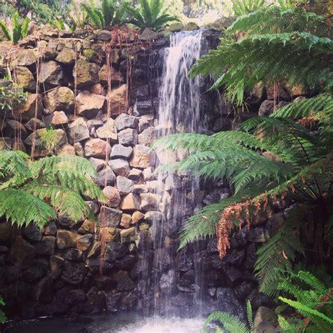 royal botanic gardens melbourne melbourne australia