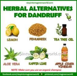 corner dandruff remedies it is what it is