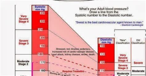 Hijama Or Oxidant Drainage Therapy Odt Hardcover pusat terapi bekam nabawi carta tekanan darah
