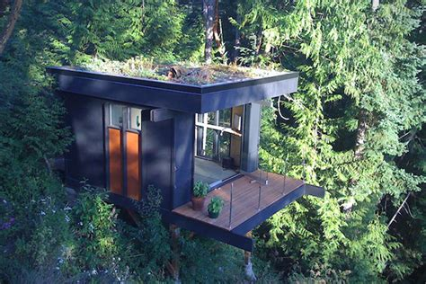 washington tree houses forever young the 18 greatest tree houses for adults hiconsumption