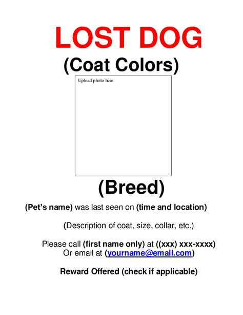 9 best images of missing dog flyer template free lost