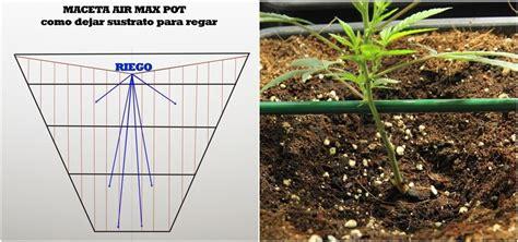 como plantar marihuana de interior c 243 mo plantar marihuana gu 237 a completa de cultivo de marihuana