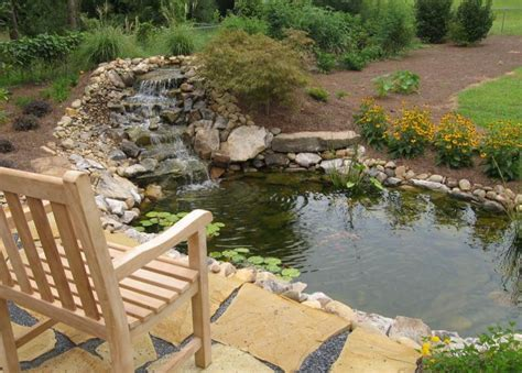 Fish For Backyard Ponds by Backyard Fish Ponds Pictures Pool Design Ideas