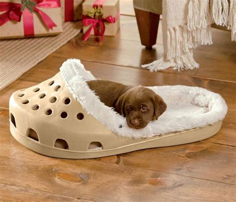 human sized dog bed 35 things for your dog that will make them love you more
