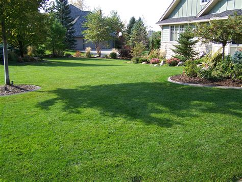 spring landscaping tips minnesota spring lawn tips for getting your yard