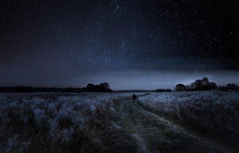 walking nature landscape starry night dirt road frost
