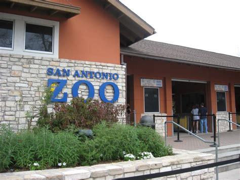drive zoo texas plan a visit to san antonio zoo
