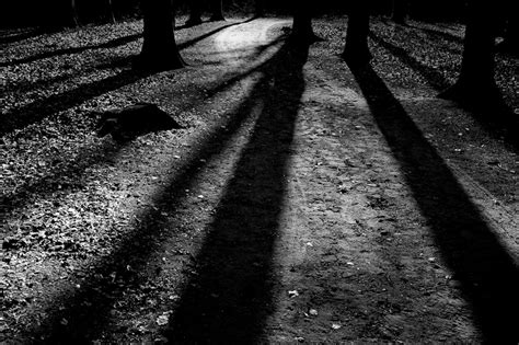 Shadows And light and shadows wouter brandsma 荷蘭