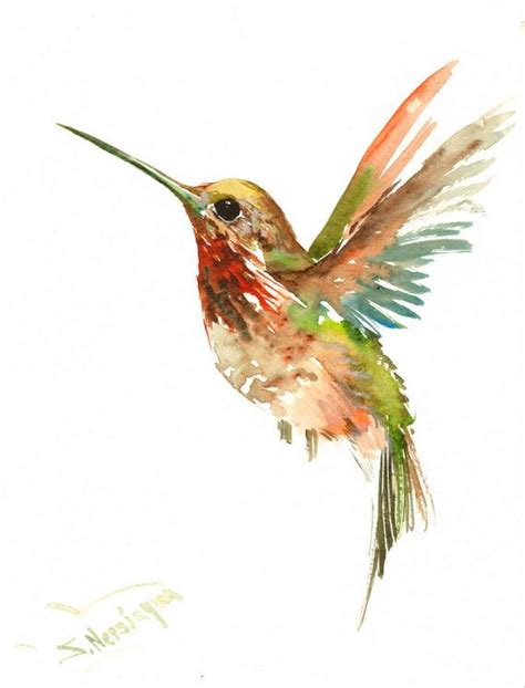 tutorial watercolor hummingbird m 225 s de 20 ideas incre 237 bles sobre nido de colibri en pinterest