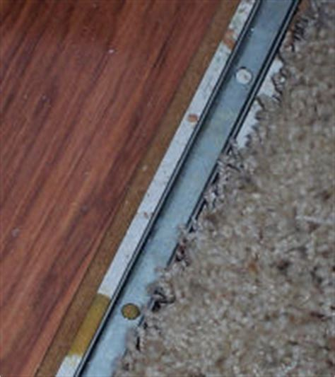 Laminate Flooring: Door Threshold Laminate Flooring