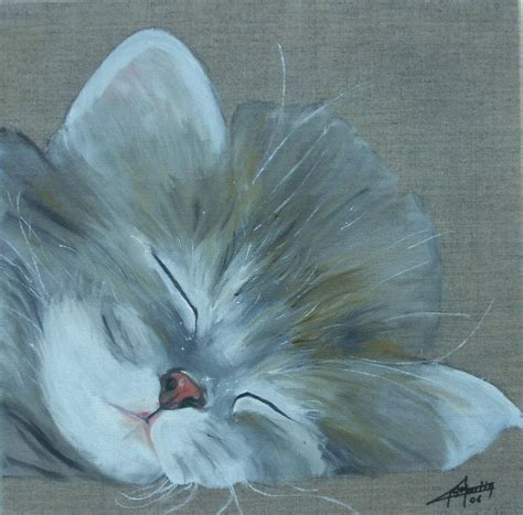 photo de dormeur dormeur photo de chats g 233 rard martin peintre