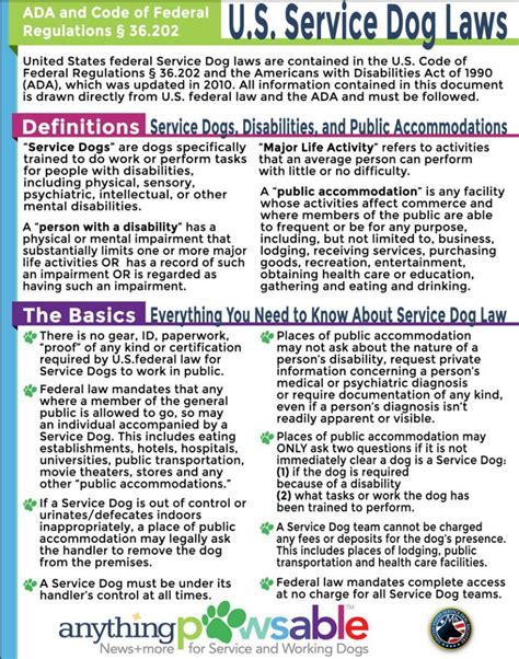 How Can I Certify My Dog As A Service Dog by Example Service Dog Certificate California