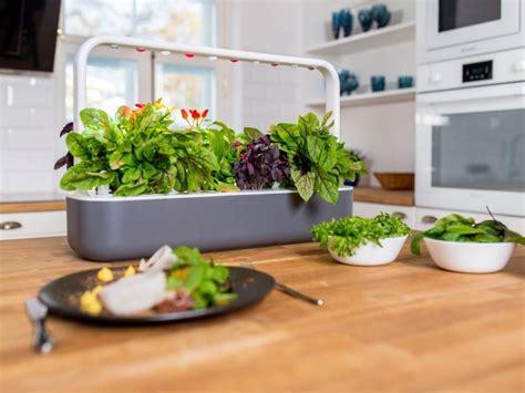 indoor garden walls  plant displays hgtv smart home