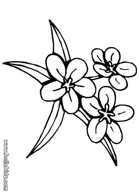 printable traceable flowers traceable flower patterns coloring home