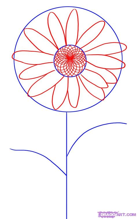 A Drawing Of A Flower by How To Draw A Step By Step Flowers Pop Culture