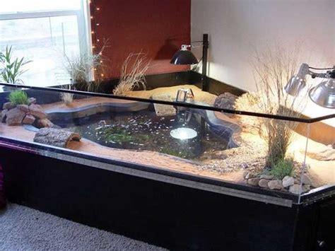vasca d acqua vasca per tartarughe tartarughe d acqua