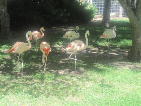 garden city ks zoo