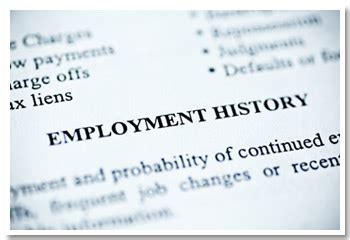 employment history let s take a look in the mirror