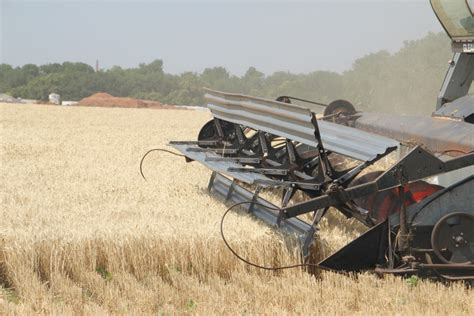 oklahoma farm report oklahoma wheat harvest in pictures