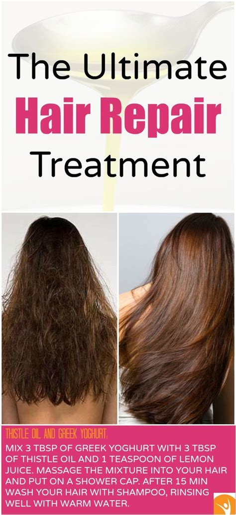 homemade treatment for winter hair how to repair damaged hair at home resources