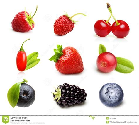 fruit vs berry different type of berry fruits isolated stock image