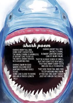 shark poem  ashleigh vilk teachers pay teachers