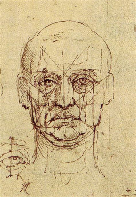 Sketches Leonardo Da Vinci by The Drawings Of Leonardo Da Vinci