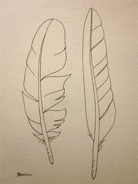 simple feather sketches www imgkid com the image kid